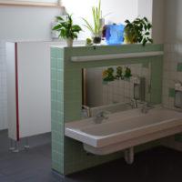 Sanitarbereich-Froschgruppe
